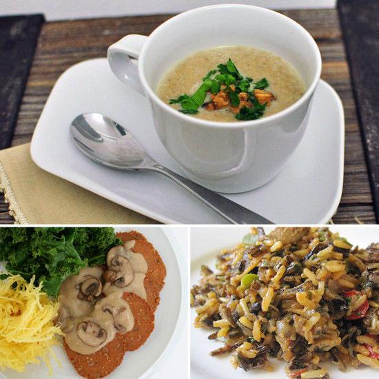 Lợi ích của nấm là gì đối với y dược và sức khỏe?