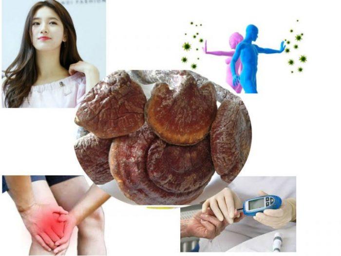 Thành phần dinh dưỡng của nấm lim xanh có tác dụng phòng bệnh và làm đẹp