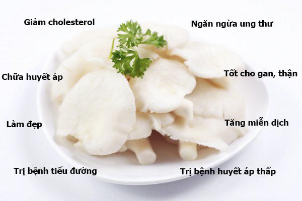 Lợi ích của việc ăn nấm không chỉ cung cấp dinh dưỡng mà còn chữa bệnh và làm đẹp.