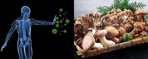 Cải thiện hệ miễn dịch là tác dụng của nấm đối với sức khỏe