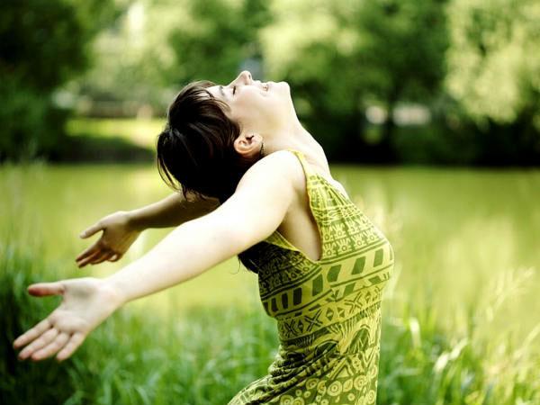 Giá trị của nấm lim xanh cho sức khỏe và vẻ đẹp