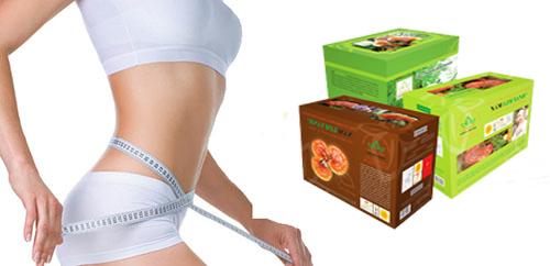 Tác dụng của nấm lim xanh trong giảm cân