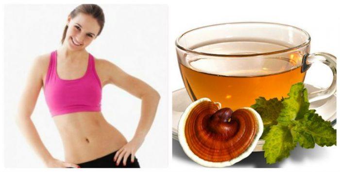 Uống nấm lim xanh giúp giảm cân và phòng ngừa bệnh tật