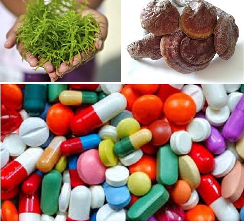Bạn có thể điều trị rối loạn miễn dịch nhờ sử dụng một số loại thảo dược