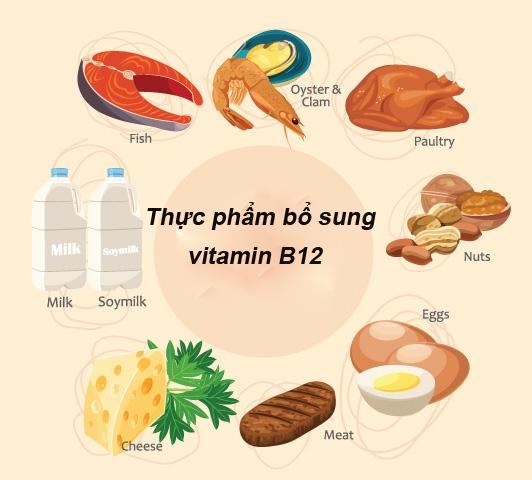 Thiếu máu nên ăn đa dạng các thực phẩm chứa nhiều vitamin B12