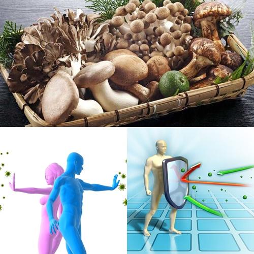 Nấm giúp tăng cường miễn dịch cho cơ thể nhờ chất polysaccharide trong thành phần