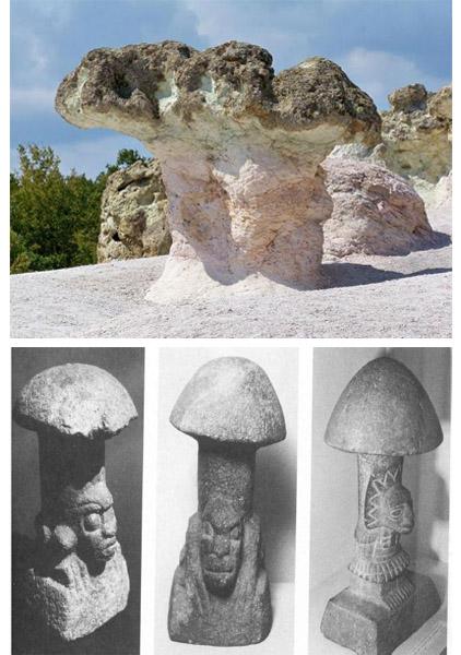Nguồn gốc sử dụng loài nấm mang ý nghĩa tôn giáo, tín ngưỡng.