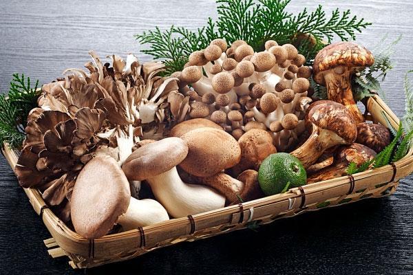 Nấm là thực phẩm chức năng có lợi cho cơ thể