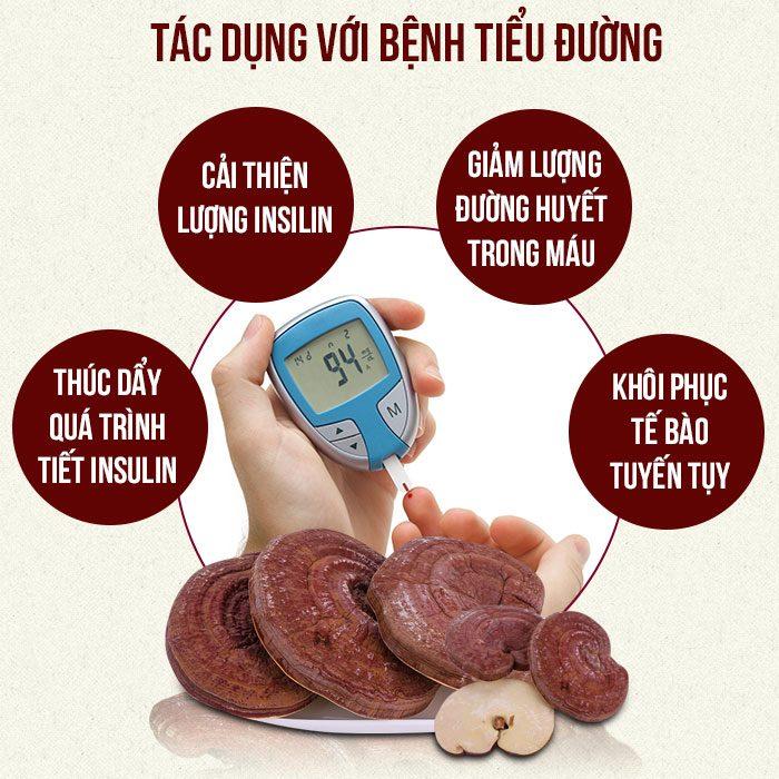 Tác dụng của nấm linh chi chữa bệnh tiểu đường.