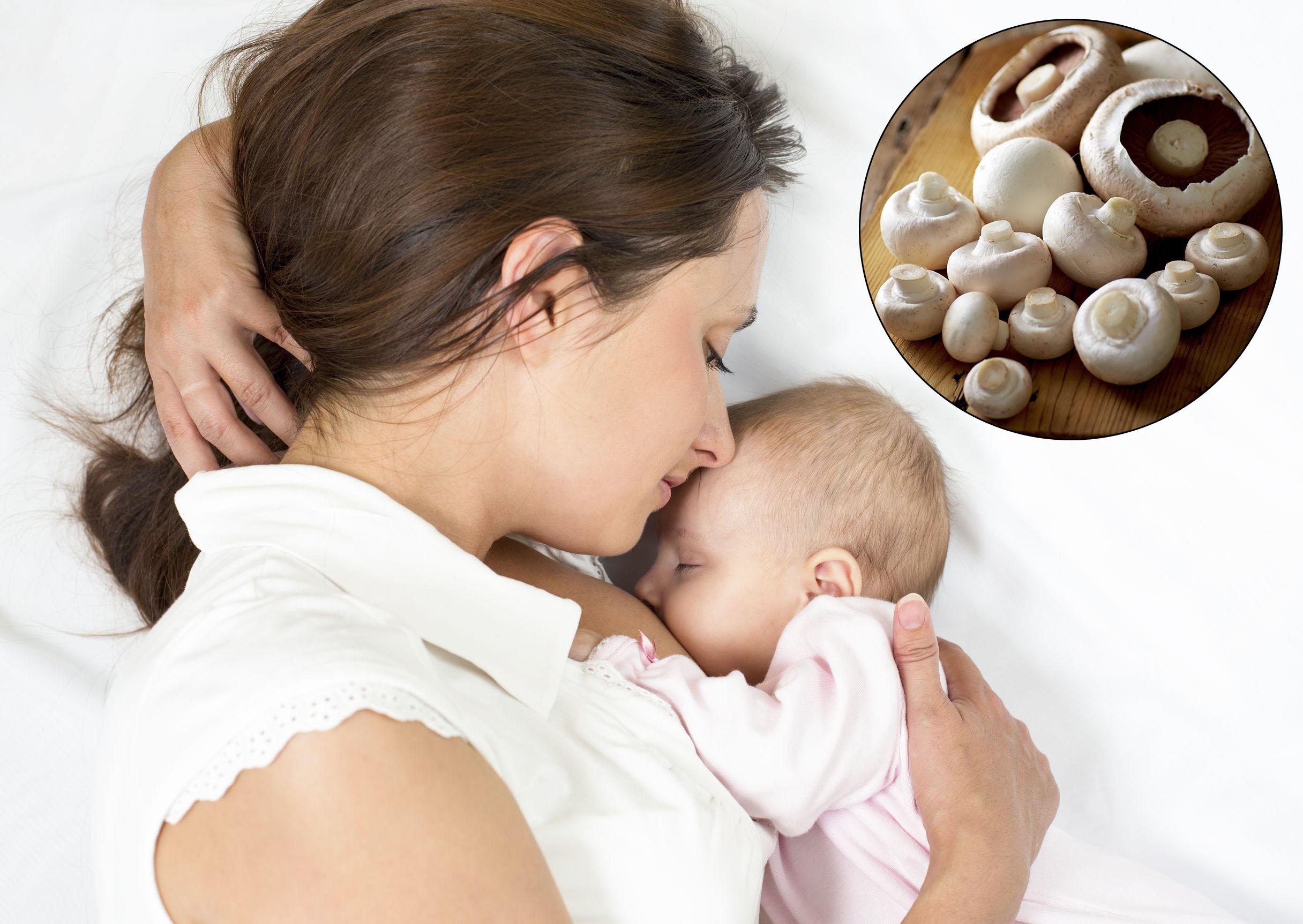 Nấm mỡ có công dụng lợi sữa đối với phụ nữ sau sinh.