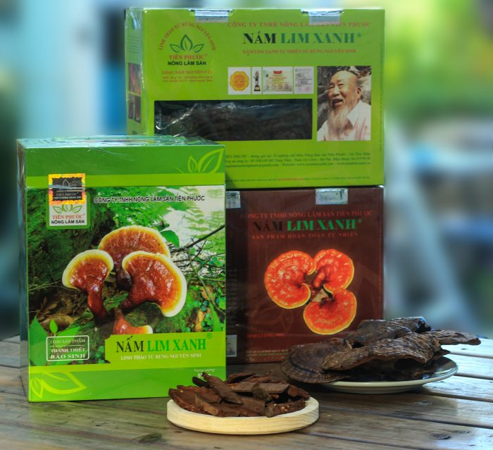 Sản phẩm nấm lim xanh của công ty Nông lâm sản Tiên Phước.