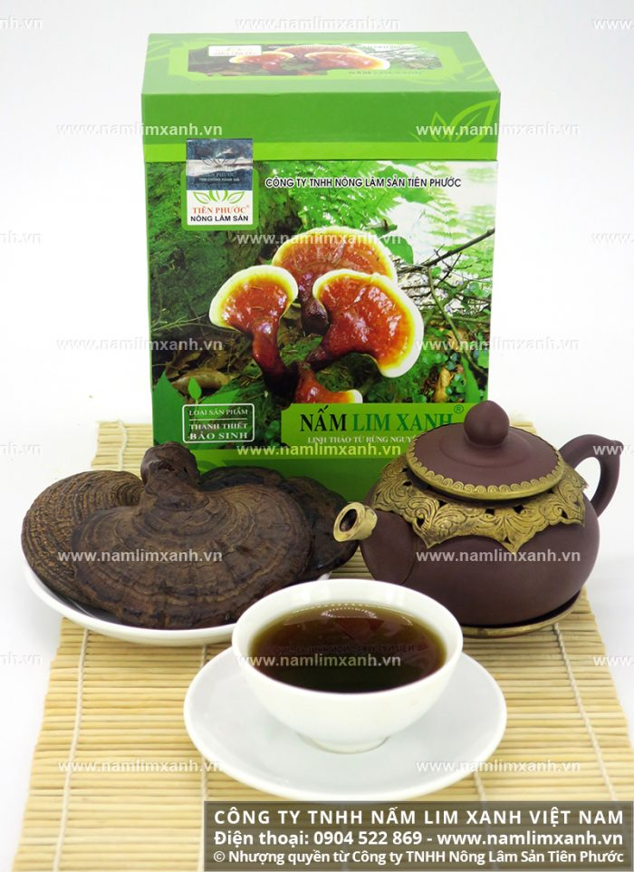 Công ty TNHH Nấm lim xanh Việt Nam chuyên cung cấp sản phẩm nấm lim xanh chính hãng