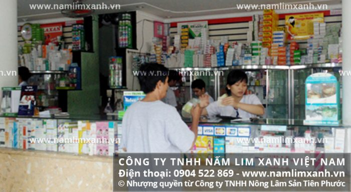 Đại lý bán nấm lim xanh tại Lai Châu được Công ty TNHH Nấm lim xanh Việt Nam ủy quyền