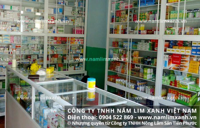 Địa chỉ bán nấm lim xanh chính hãng tại Bình Thuận của Công ty TNHH Nấm lim xanh Việt Nam