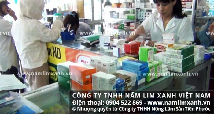 Địa chỉ bán nấm lim xanh chính hãng tại Lào Cai của Công ty TNHH Nấm lim xanh Việt Nam