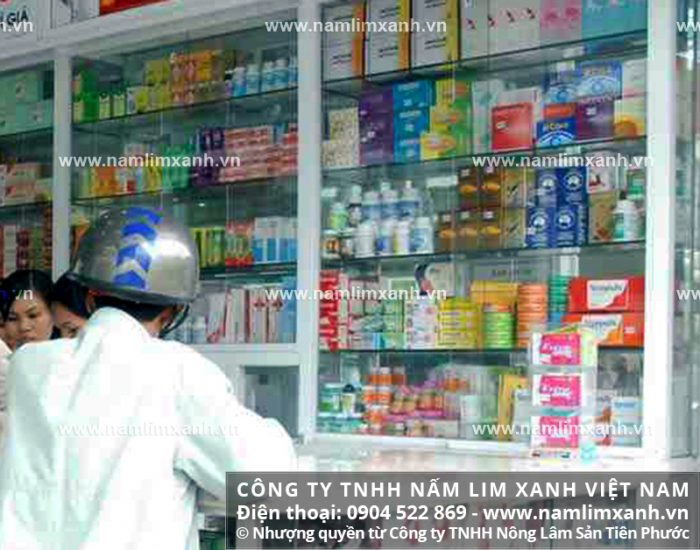 Địa chỉ bán nấm lim xanh chính hãng tại Thanh Hóa của Công ty TNHH Nấm lim xanh Việt Nam