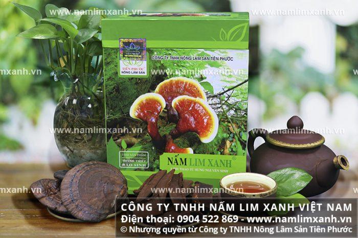 Nấm gỗ lim xanh của Công ty TNHH Nấm lim xanh Việt Nam