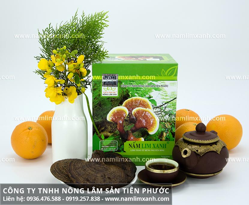 Sử dụng nấm lim xanh như thế nào với cách uống nấm lim rừng hiệu quả