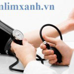 Người bệnh huyết áp thấp có nên dùng nấm lim xanh?