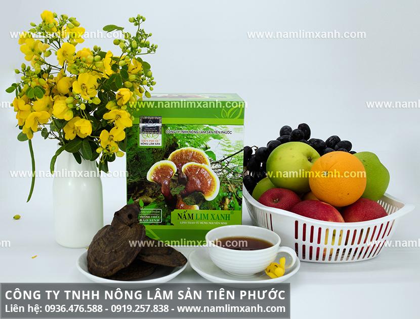Nấm lim xanh chữa bệnh cao huyết áp với công dụng nấm lim Tiên Phước