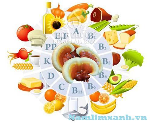 Các loại vitamin trong nấm lim xanh và tác dụng hữu ích với sức khỏe
