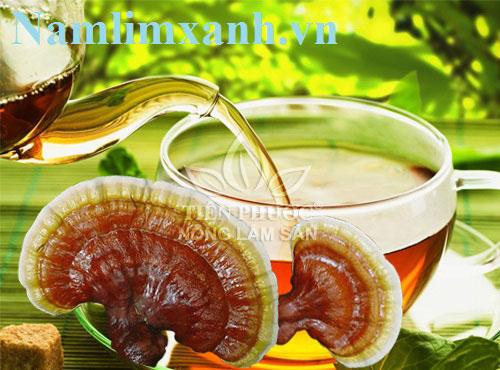 Uống nấm lim xanh điều trị viêm gan