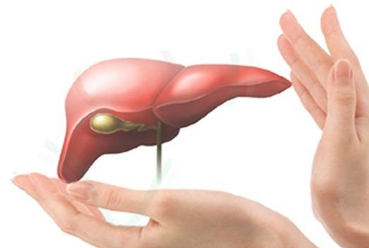 Phòng ngừa viêm gan A để có lá gan khỏe mạnh