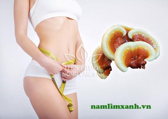 giảm cân nhanh từ nấm linh xanh