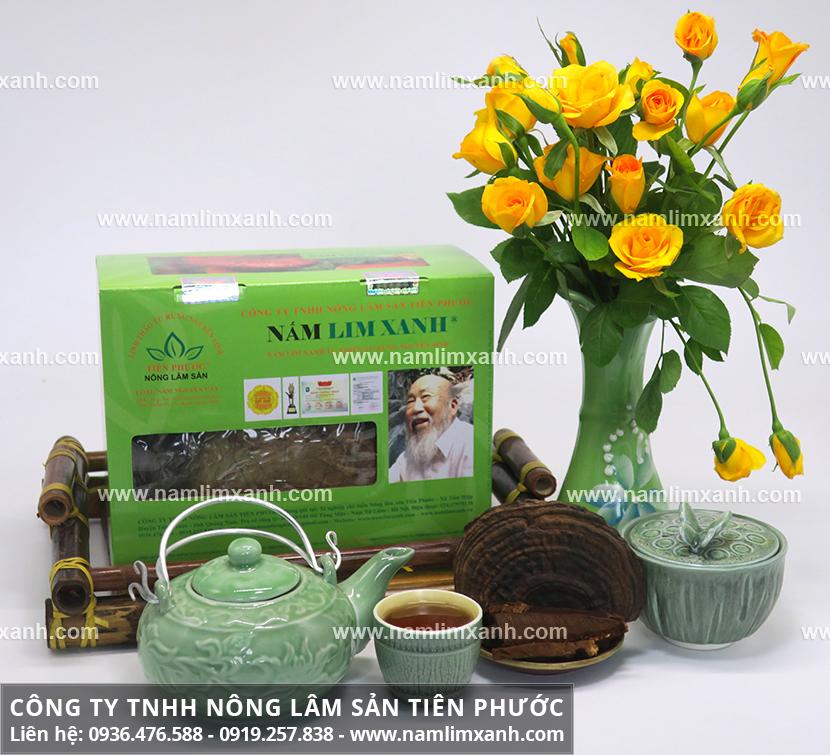Nấm lim Lào có đặc điểm gì với điều trị ung thư bằng nấm lim xanh Lào