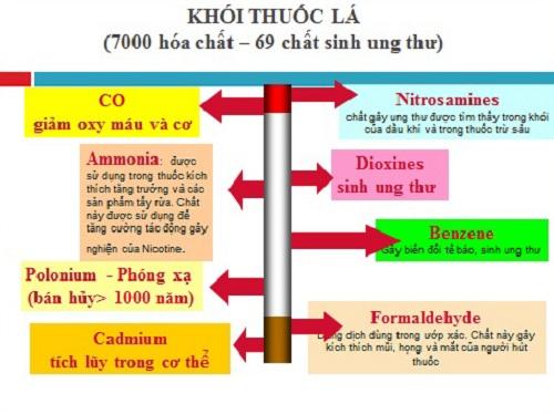 Thành phần khói thuốc có chứa tới 69 chất gây ung thư