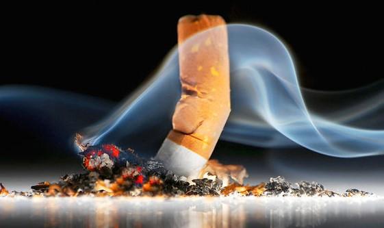 Phòng tránh ung thư phế quản từ việc tránh xa thuốc lá