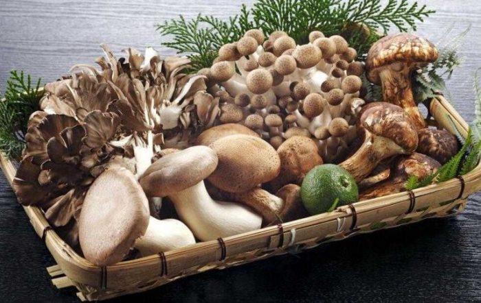 Nấm là thực phẩm có nhiều lợi ích cho sức khỏe.