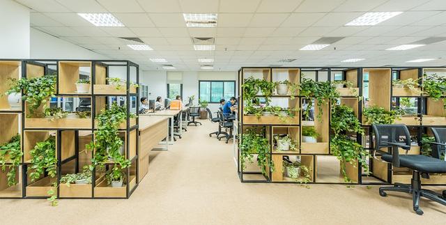 Công sở xanh giúp giảm stress, nâng cao hiệu quả làm việc