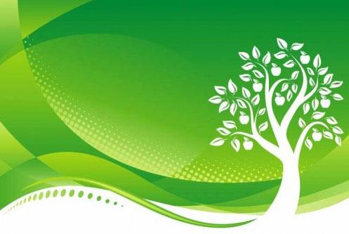 Chung tay xây dựng môi trường xanh – sạch – đẹp