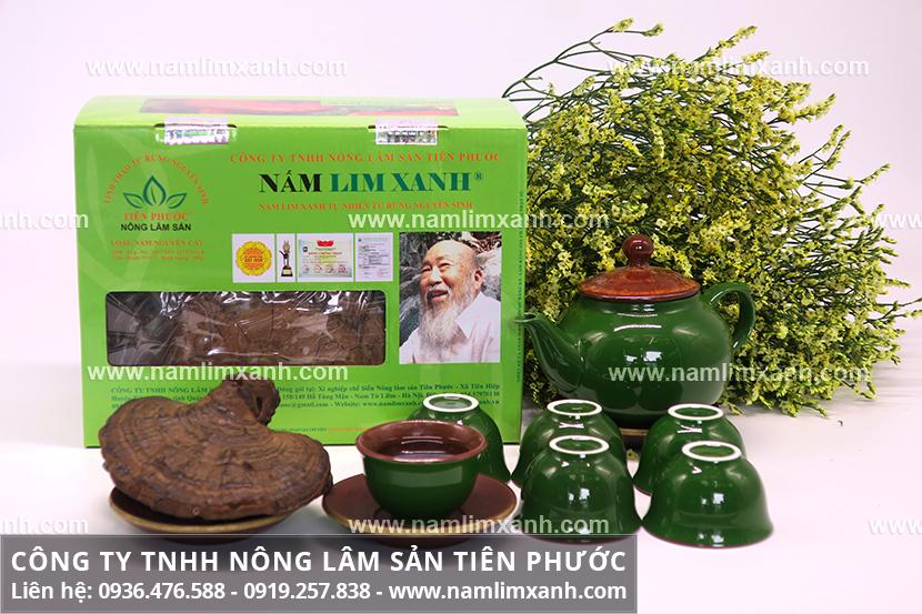 Tác dụng nấm lim xanh chữa ung thư và nấm lim rừng tác dụng trị bệnh