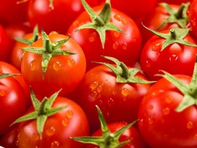 cà chua phòng tránh bệnh mùa đông namlimxanh.vn