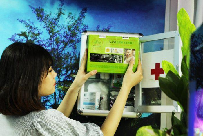 Nấm lim xanh giúp hạn chế và phòng tránh các bệnh ung thư
