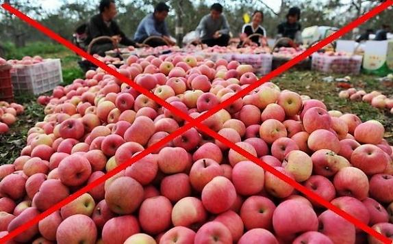 Nên lựa chọn trái cây sạch và có nguồn gốc, xuất xứ rõ ràng.