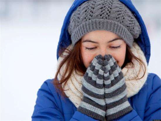 giữ sức khỏe khi trời lạnh nấm lim xanh