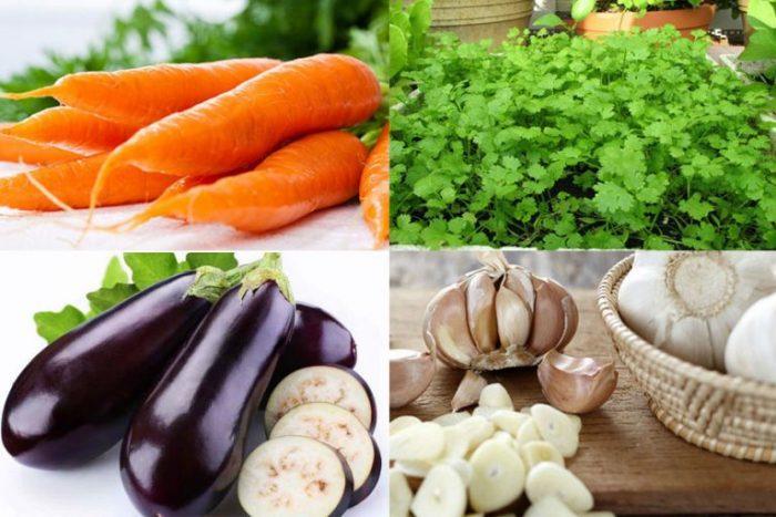 Thanh lọc máu bằng thực phẩm giúp cơ thể khỏe mạnh.