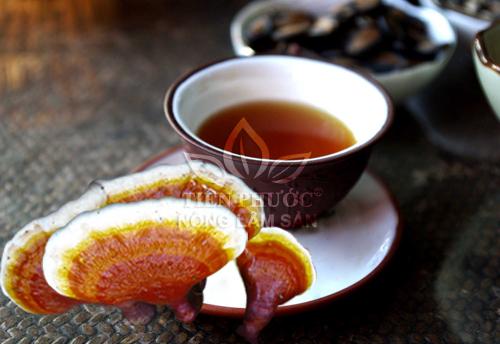 Cách nấu nấm lim xanh Quảng Nam với cách uống nước nấm lim rừng