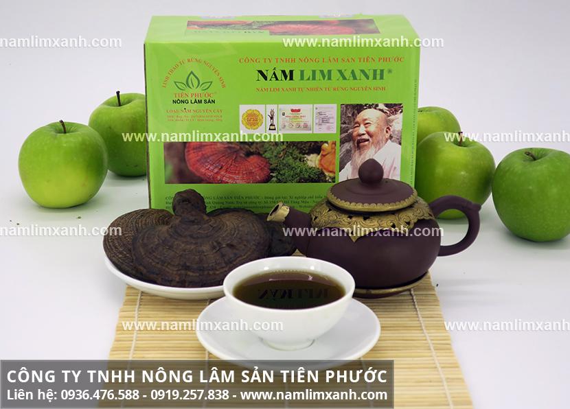 Tác dụng của cây nấm lim và công dụng chữa ung thư phổi của nấm gỗ lim