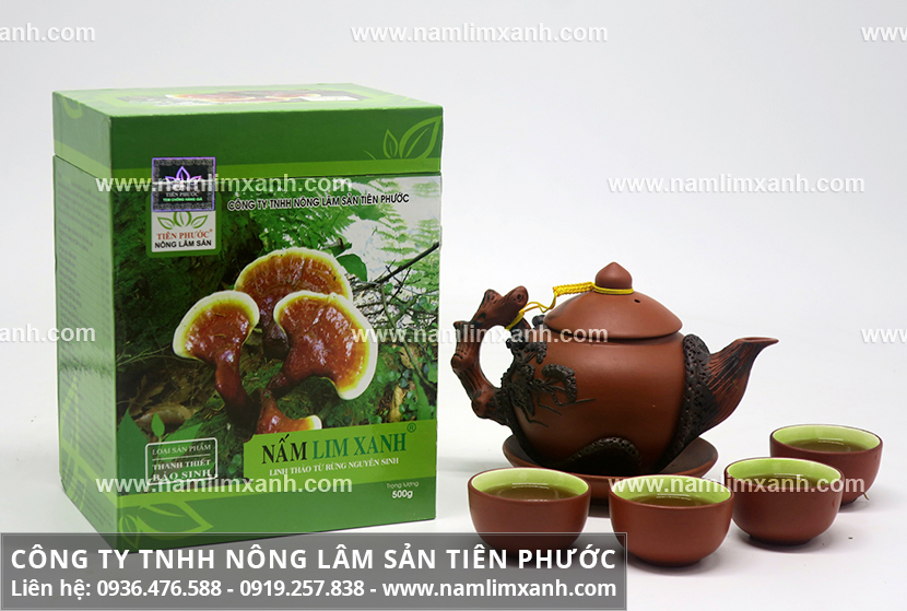 Tác dụng của nấm lim và công dụng nấm lim Tiên Phước trị cao huyết áp