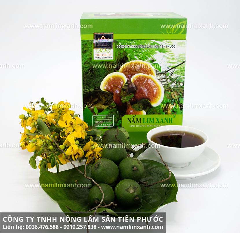 Cách dùng nấm lim xanh hiệu quả với cách sắc nấm lim rừng đúng chuẩn