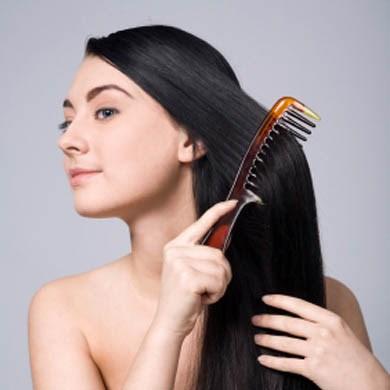 Chải tóc trước khi gội đầu làm giảm tóc gãy rụng nấm lim xanh