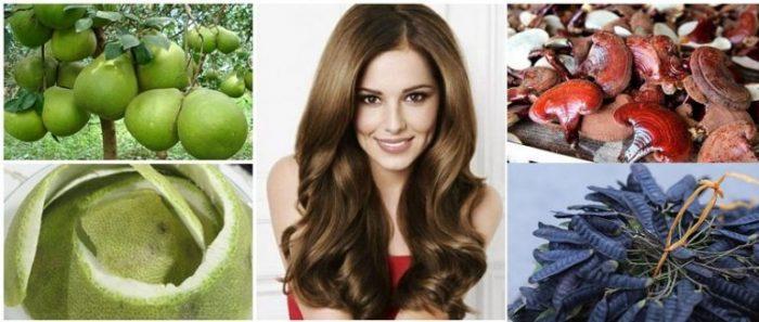 Chữa rụng tóc bằng thuốc nam như nấm lim xanh, vỏ bưởi, bồ kết... là phương pháp được các bác sỹ Đông y khuyên dùng