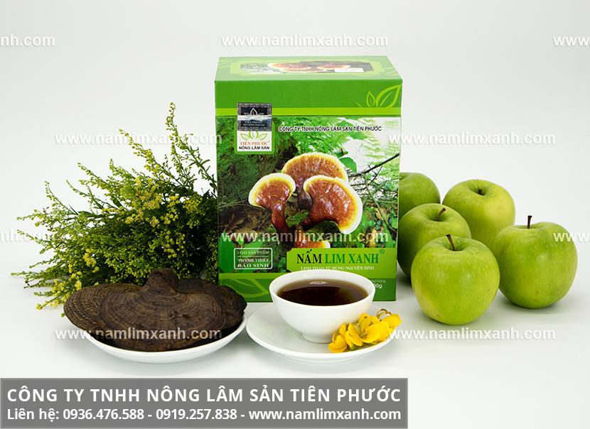 Công dụng chữa bệnh của nấm lim xanh rừng Tiên Phước nhờ dược chất