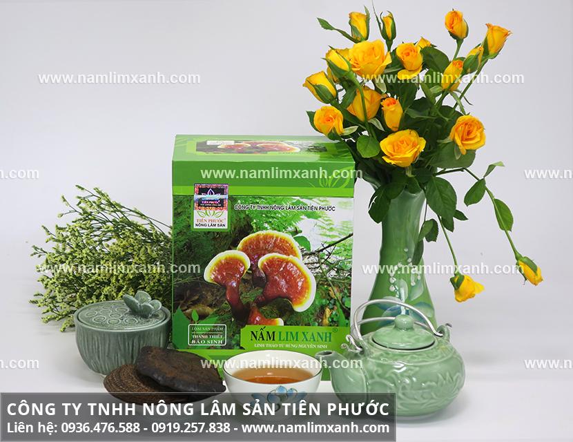 Công dụng của nấm lim xanh Quảng Nam với tác dụng nấm lim chữa bệnh