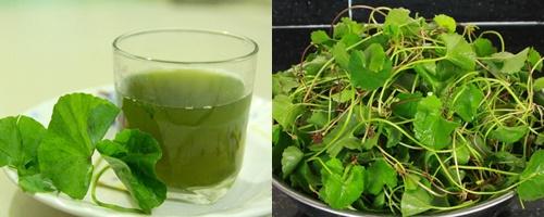 Nước rau má là đồ uống tốt cho sức khỏe qua việc giải độc, thanh lọc cơ thể