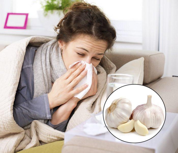 Kháng sinh trong tỏi có công dụng trị ho, cảm cúm, phòng ngừa nhiễm khuẩn đường hô hấp.